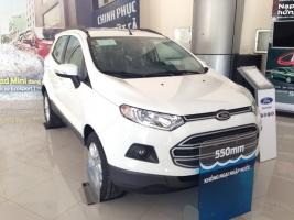 Cần bán xe Ford EcoSport Trend MT 2017 giá tốt.