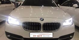 Xe BMW 5 Series 520i 2015