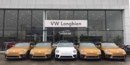 Con bọ huyền thoại của hãng xe Đức Volkswagen Beetle