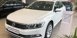 Xe Volkswagen Passat Bluemotion High Nhập khẩu nguyên chiếc