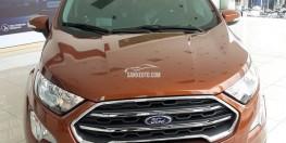 Ford Ecosport 2018 Dòng Mini SUV Vua Đường Phố