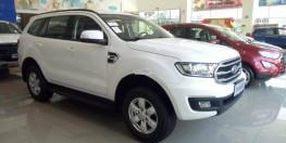 Ford Everest Ambient 2019 Giảm Tiền Mặt Đúng 100 Triệu