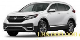CRV L 2020 new